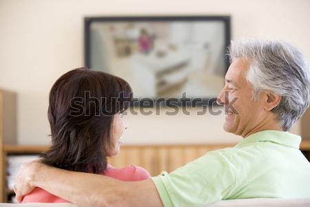 Two men in living room watching television and cheering Stock photo © monkey_business