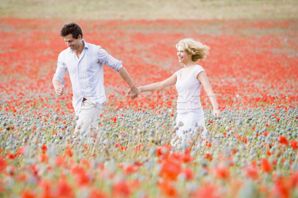 Photo stock: Couple · marche · pavot · domaine · mains · tenant · souriant