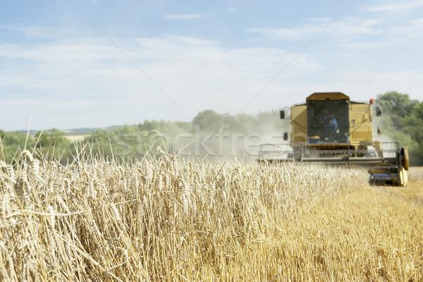 Combine Harvester Working In Field Stock photo © monkey_business
