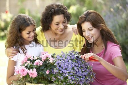Anya lánygyermek tart kosár nárciszok kert Stock fotó © monkey_business