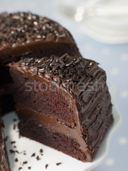 Slice Of Chocolate Fudge Cake Stock photo © monkey_business