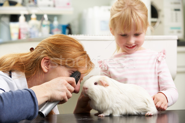 Female Veterinary Surgeon Examining Child's Guinea Pig In Surger Stock photo © monkey_business