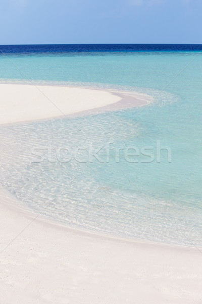 Beautiful Deserted Tropical Beach Stock photo © monkey_business