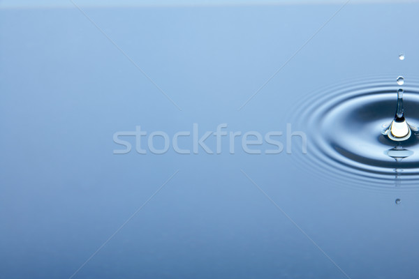 Concentric Circles Forming In Still Water Stock photo © monkey_business