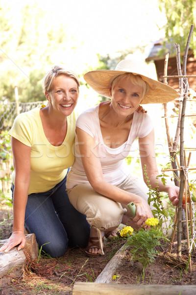 старший женщину взрослый дочь расслабляющая саду Сток-фото © monkey_business