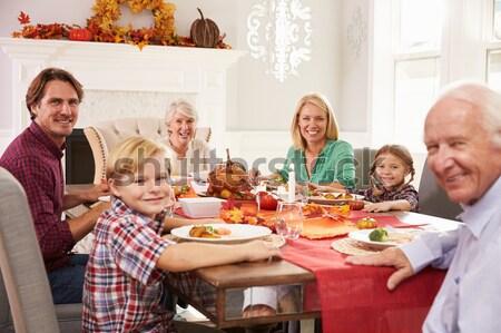 Stok fotoğraf: Aile · Noel · akşam · yemeği · kız · şarap