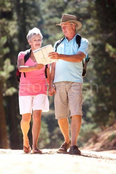 Idős pár olvas térkép vidék séta férfi Stock fotó © monkey_business