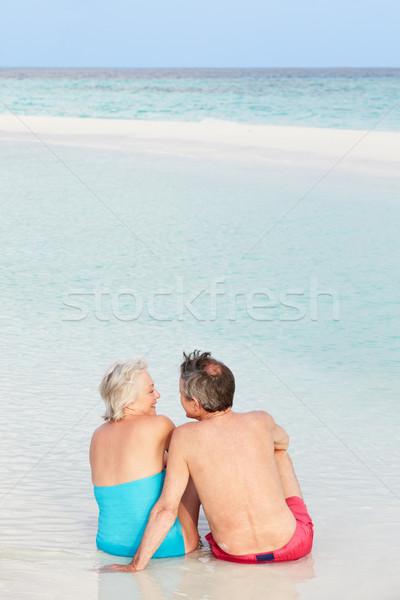 Hátsó nézet idős pár ül gyönyörű tengerpart szeretet Stock fotó © monkey_business