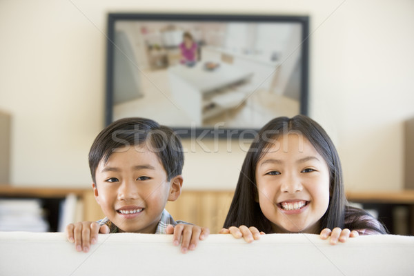 Twee jonge kinderen woonkamer flatscreen televisie Stockfoto © monkey_business