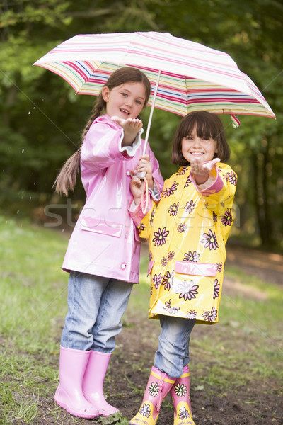 Two sisters outdoors in rain with umbrella smiling Stock photo © monkey_business