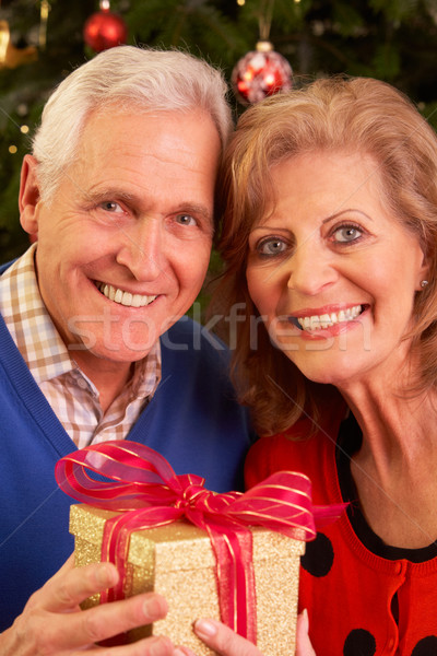 Senior Couple Exchanging Christmas Gifts Stock photo © monkey_business