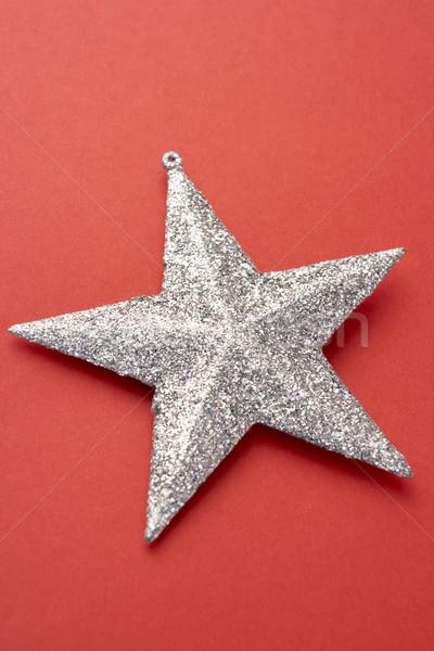 Silver Christmas Tree Decoration Stock photo © monkey_business