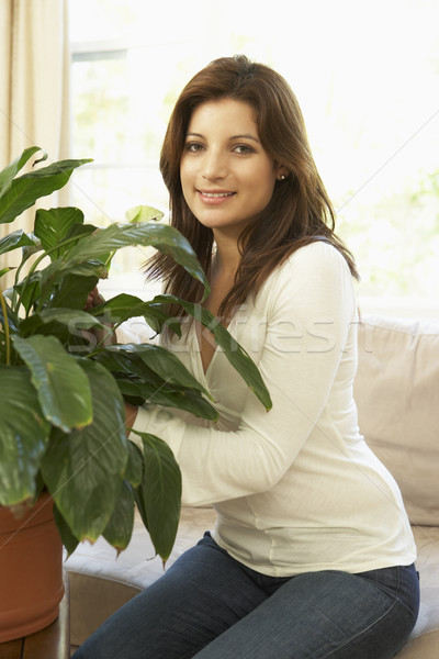 Woman At Home Looking After Houseplant Stock photo © monkey_business