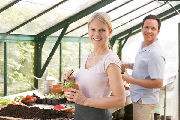 Couple in greenhouse raking soil in pots smiling Stock photo © monkey_business
