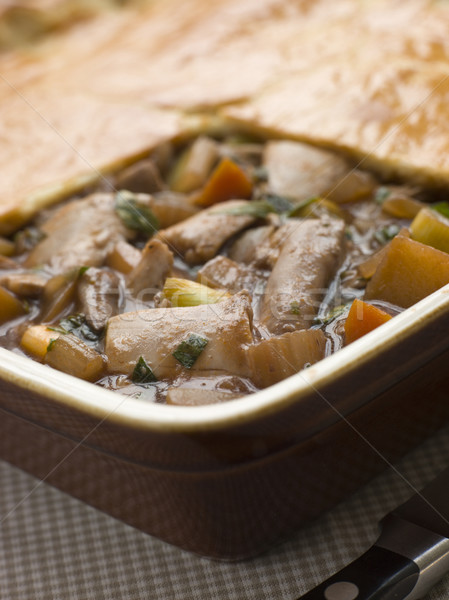 Chicken Vegetable and Gravy Pie Stock photo © monkey_business