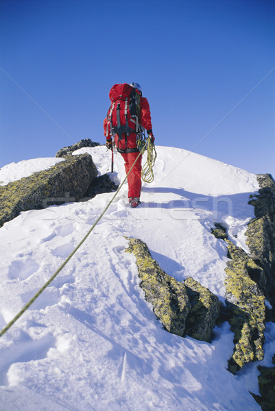 Young man mountain climbing on snowy peak Stock photo © monkey_business