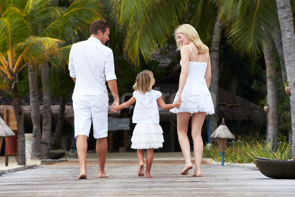 Rear View Of Family Walking On Wooden Jetty Stock photo © monkey_business