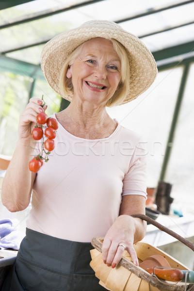 Photo stock: Femme · effet · de · serre · tomates · cerises · femme · souriante · souriant