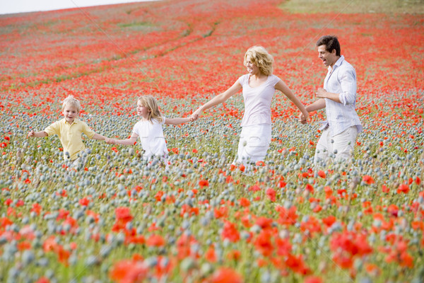 Family walking in poppy field holding hands smiling Stock photo © monkey_business
