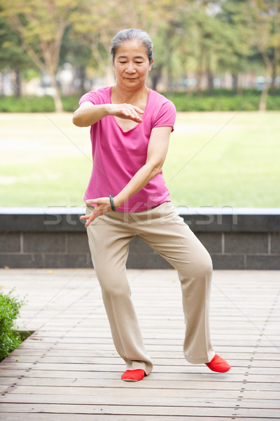 Senior Chinese Woman Doing Tai Chi In Park Stock photo © monkey_business