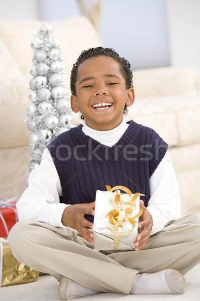 Stockfoto: Portret · jongen · christmas · aanwezig · kinderen · home