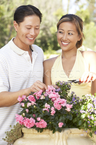 Young Couple Working In Garden Stock photo © monkey_business