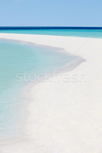 Beautiful Deserted Tropical Beach Stock photo © monkey_business