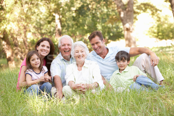 Ritratto famiglia allargata gruppo parco ragazza giardino Foto d'archivio © monkey_business