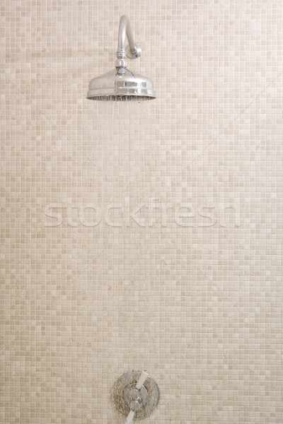Empty shower with running water Stock photo © monkey_business