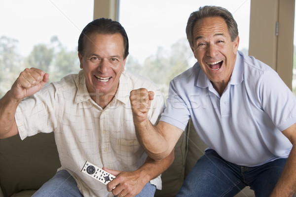 Two men in living room with remote control cheering and smiling Stock photo © monkey_business