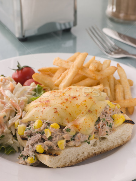 Nyitva tonhal csemegekukorica káposztasaláta sültkrumpli sajt Stock fotó © monkey_business