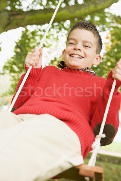 Stock fotó: Fiatal · srác · szórakozás · hinta · kert · fa · boldog