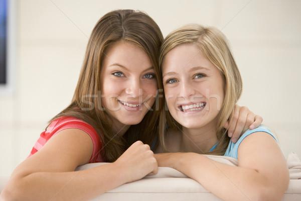 兩個女人 客廳 微笑 女子 微笑 婦女 商業照片 © monkey_business