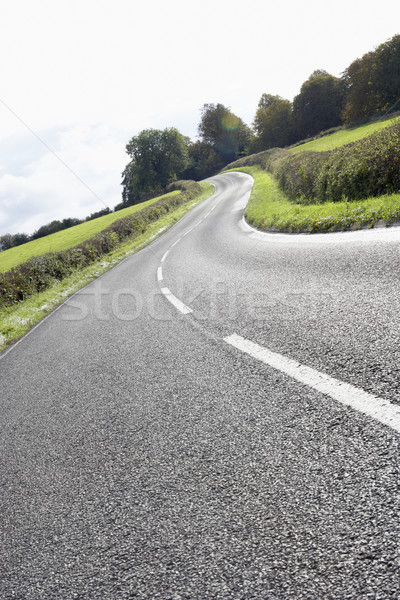 Winding Country Road Edged By Hedges Stock photo © monkey_business