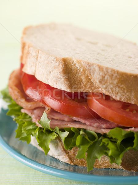 Blt fehér kenyér étel szendvics zöldség étel Stock fotó © monkey_business