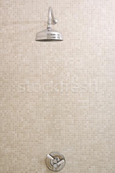 Foto stock: Vacío · ducha · casa · habitación · interior · hermosa
