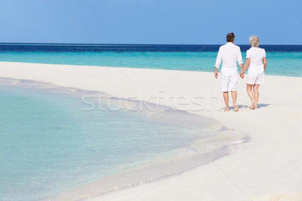 Foto stock: Senior · romântico · casal · caminhada · belo · praia · tropical