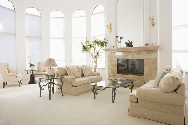 Empty living room in luxurious home Stock photo © monkey_business