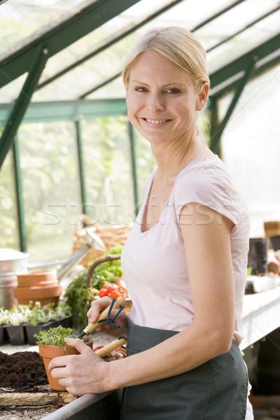 Stock foto: Frau · Gewächshaus · Boden · Topf · lächelnde · Frau · lächelnd