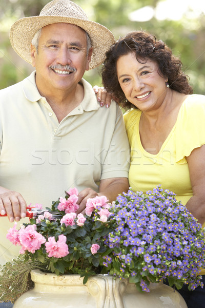 Senior Couple Gardening Together Stock photo © monkey_business