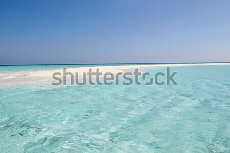 Beautiful Deserted Beach Stock photo © monkey_business