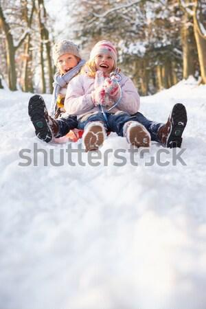 Family Enjoying Sledging Down Snowy Hill Stock photo © monkey_business