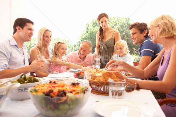 Família pais crianças avós desfrutar piquenique Foto stock © monkey_business