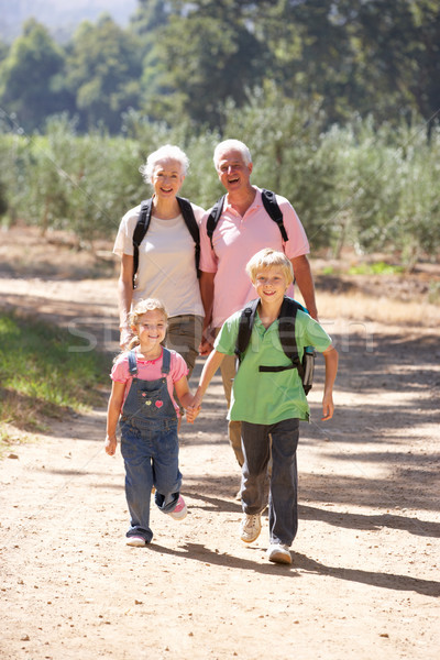 Senior couple and grandchildren on country walk Stock photo © monkey_business
