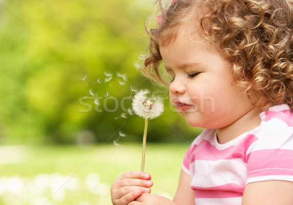 Young Girl In Summer Dress Sitting In Field Blowing Dandelion Stock photo © monkey_business