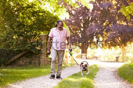 Stock photo: Man With Young Son Walking Dog Through Autumn Park