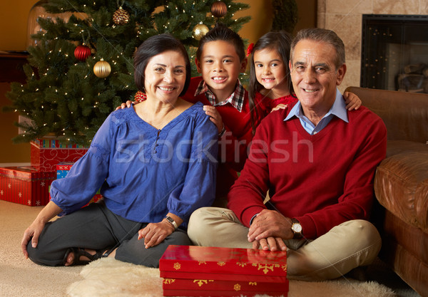 Grandparents With Grandchildren In Front Of Christmas Tree Stock photo © monkey_business