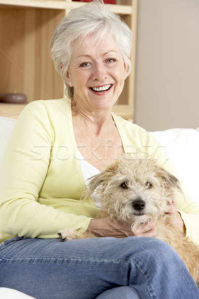 Senior Woman Holding Dog On Sofa Stock photo © monkey_business