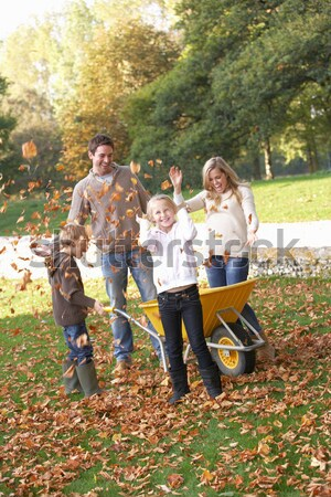 Family having fun with autumn leaves in garden Stock photo © monkey_business