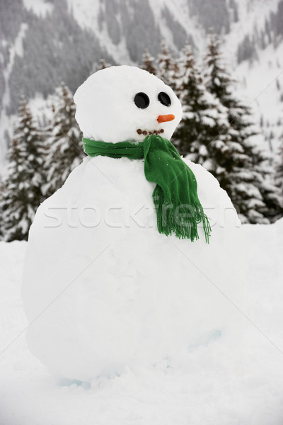 Snowman Built in Alpine Location Stock photo © monkey_business